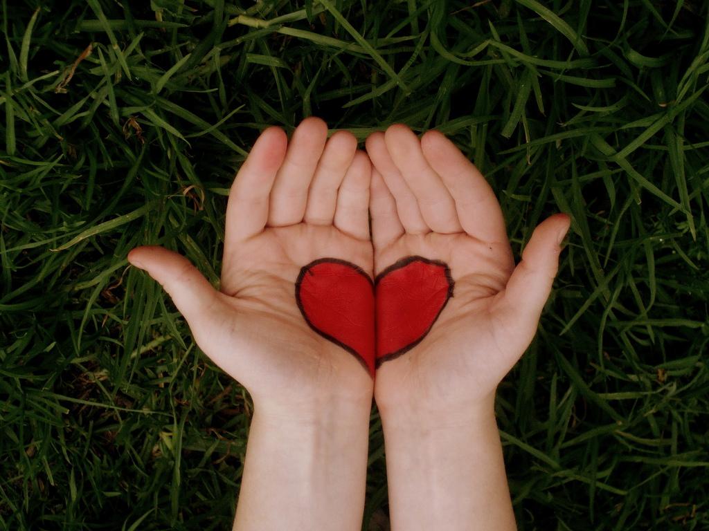 В США смертность от врожденных пороков сердца продолжает сокращаться