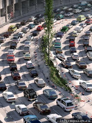 Дамы склонные к полноте чаще погибают в автомобильных катастрофах