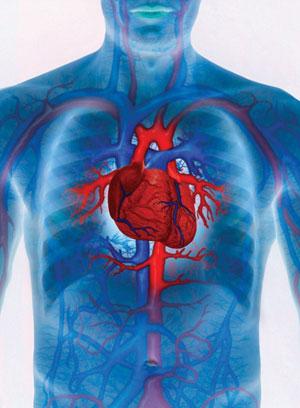 Предсказание сердечной недостаточности