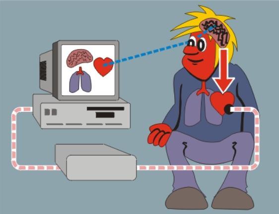 Сидение перед телевизором или компьютером более двух часов в день существенно увеличивает риск возникновения инфаркта