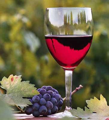 Таблетки из вина спасают жизнь