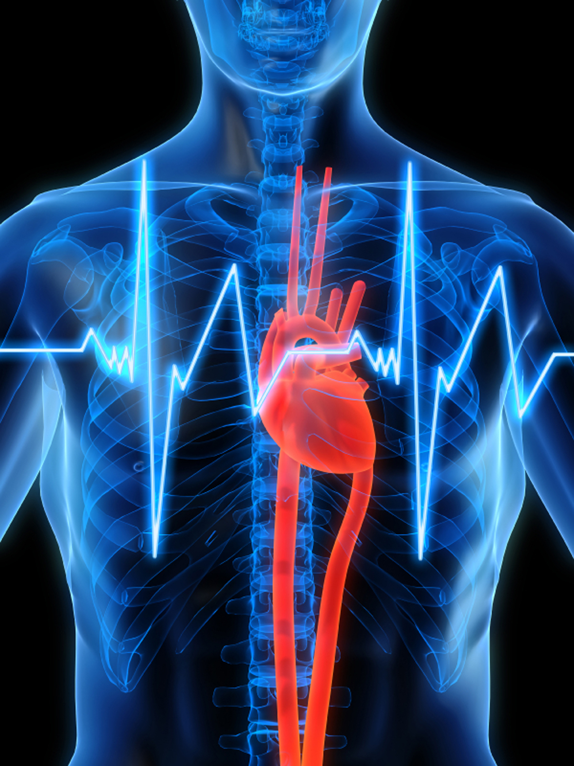 В Москве на всероссийской конференции «Инновации в кардиологии» пройдет презентация телемедицинского центра