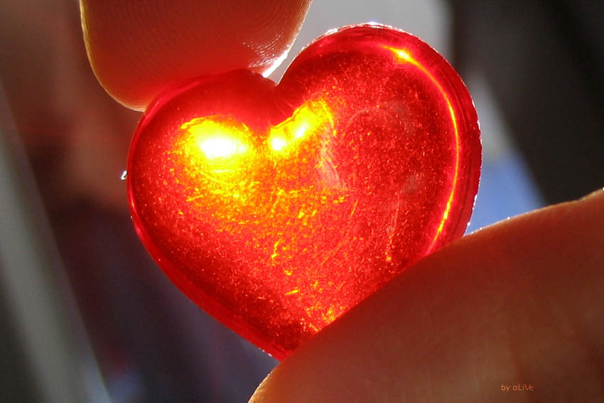 Сердце — хозяин организма человека