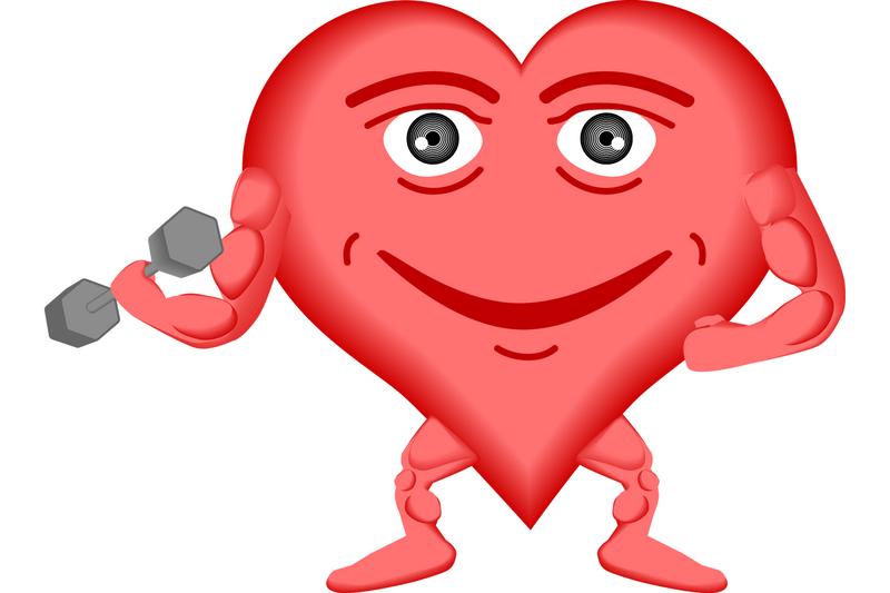Как остановить старение сердца?