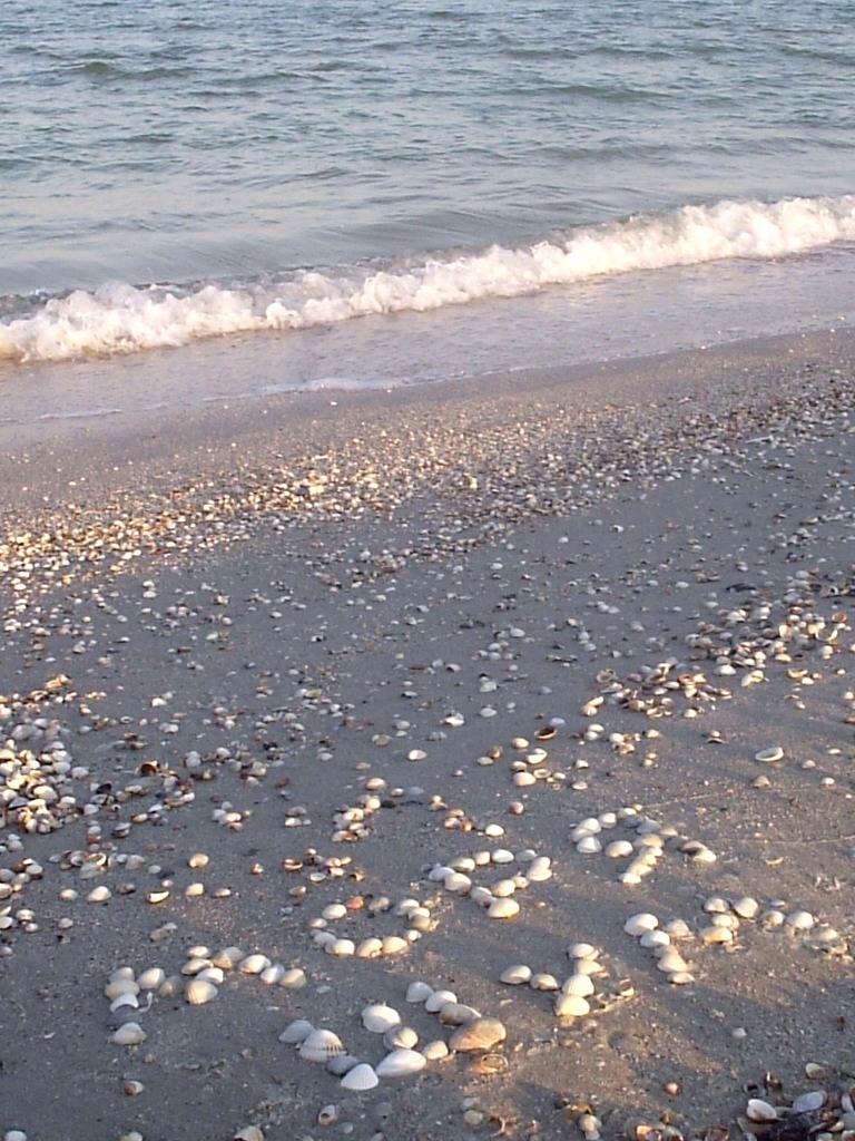 Шум моря нормализирует давление