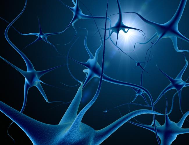 Гибель нервных клеток – одна из многих причин повышенного давления у человека