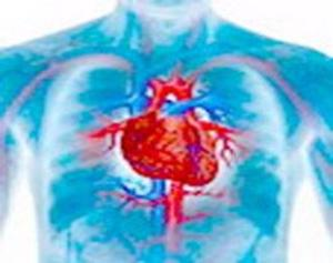 Генетическая мутация неизбежно ослабляет сердце