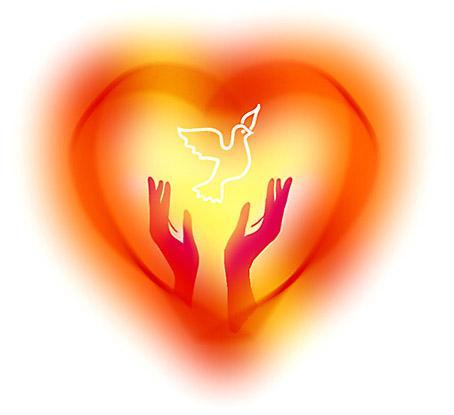 Женское сердце защищают гормоны