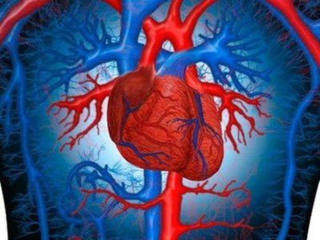 При помощи аппарата АИК, была удалена на сердце опухоль