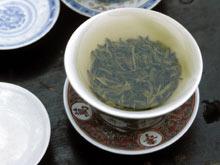 Зеленый чай снижает показатели «вредного холестерина»