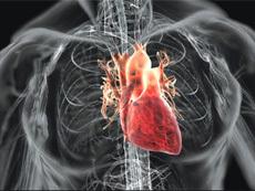 При использовании АНД в первые 3 мин. после остановки сердца удается спасти более 70% людей
