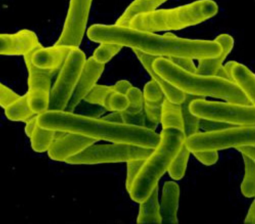 Открытие центра по лечению туберкулеза