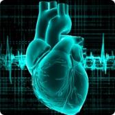 Ревматоидный артрит и мерцательная аритмия: новые данные