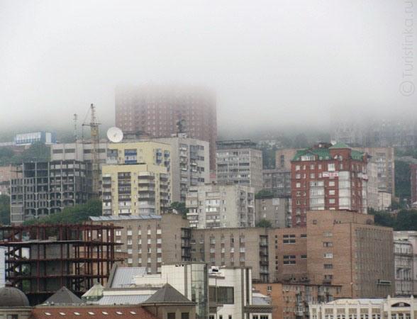 Сердечникам вреден загазованный город