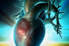 Ученые смогут ставить на сердце «заплатки»
