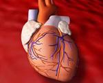Увеличение длины теломер клеток восстанавливает сердечную мышцу