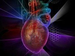 Ученые научились ставить заплатки на сердце