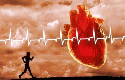 Сердце в порядке – спасибо зарядке