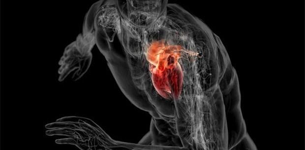 Основной причиной женской смертности в США являются заболевания сердца