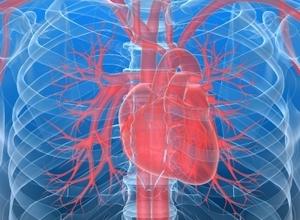Виагра не лечит сердечную недостаточность
