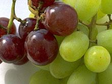Виноград препятствует развитию метаболического синдрома и заболеваний сердца