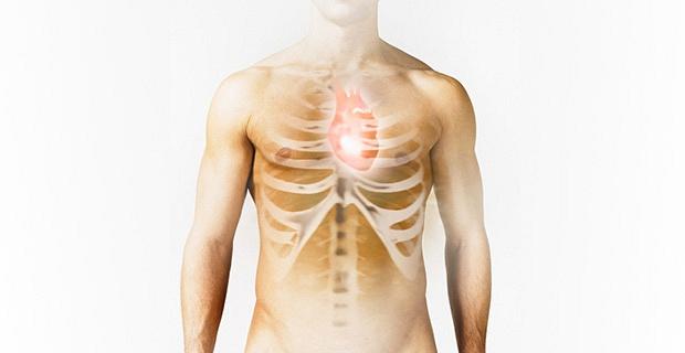 Польза спорта для здоровья сердца