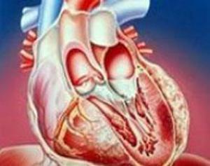 Ключевой продукт для профилактики сердечной недостаточности