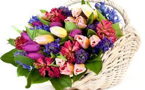 Нет повода не дарить цветы