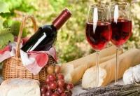 Вино защитит сердечно-сосудистую систему