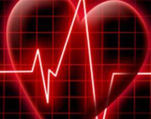 Сердце сжигает лишний жир