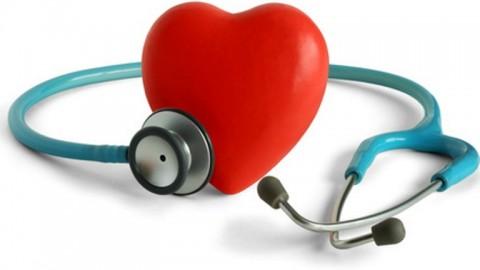 Обнаружили влияние белка на сердце