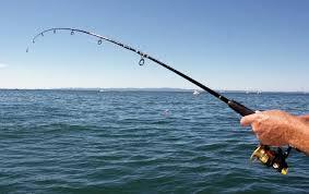 Важная информация для всех рыбаков и не только