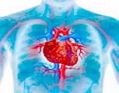 Неподдающаяся лечению анемия – признак сердечного приступа в будущем