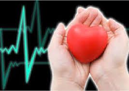 5 правил, чтобы прожить без инфаркта.
