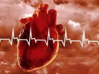 Смертность от инфаркта миокарда в России снизилась в 2 раза за 10 лет