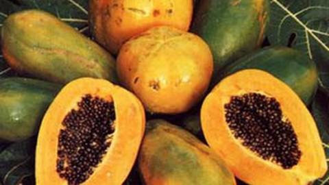 Некоторые продукты способны снизить кровяное давление