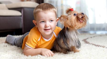 Стоит ли заводить домашнего питомца для ребенка