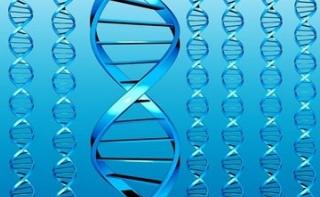 Найдены гены, ответственные за артериальное давление