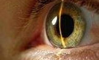 Снижение глазного давления поможет приостановить глаукому