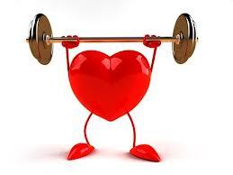 Как работает наше сердце