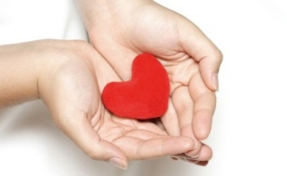 Интересные теории о здоровье сердца