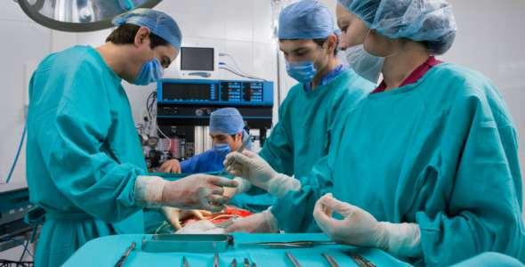 Передовое лечение рака в Израиле с клиникой Ихилов