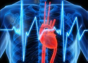 Ученые изучают состояние сердца по движениям головы человека