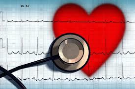 Российские ученые планируют создать искусственное сердце
