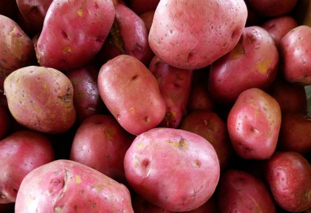 Красный картофель помогает нормализовать давление
