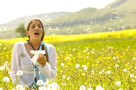 Аллергия: виды и методы профилактики