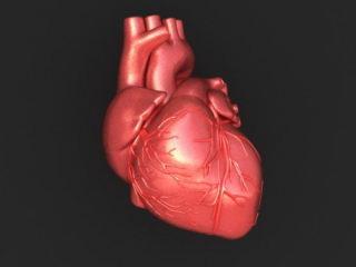 Ученые установили, что у оптимистов сердце здоровее, чем у пессимистов