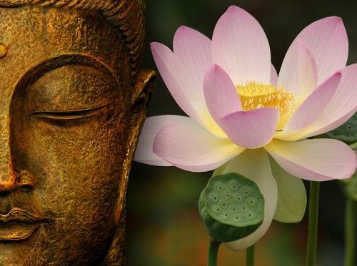 Установлено, что йога может помочь снизить давление
