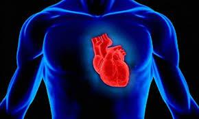 Электрическая стимуляция сердца