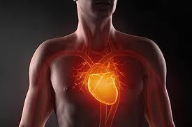 Названы 5 самых вредных факторов для сердца